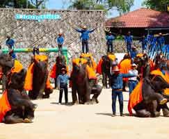 Malaysia Honeymoon Trip